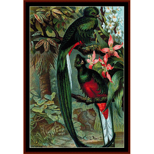 Resplendent Trogon - Wildlife cross stitch pattern by Cross Stitch Collectibles | Crafting | Cross-Stitch | Wall Hangings