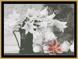 Lilies Black And White