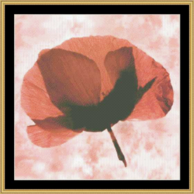 Pink Poppies | Crafting | Cross-Stitch | Other