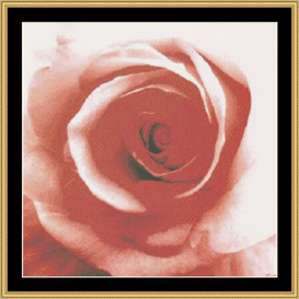 Peach Rose | Crafting | Cross-Stitch | Other