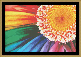 Colorful Daisy | Crafting | Cross-Stitch | Other
