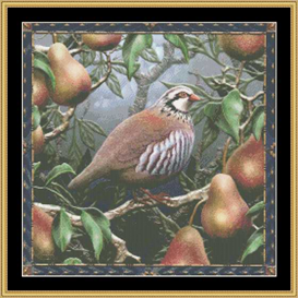 Partridge In A Pear Tree - Maxine Gadd | Crafting | Cross-Stitch | Other