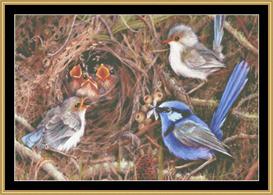 Blue Wren Family - Maxine Gadd   Crafting   Cross-Stitch   Other