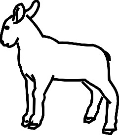Lamb - eps | Other Files | Clip Art