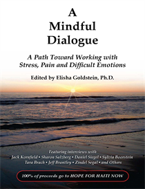 haiti relief ebook: a mindful dialogue