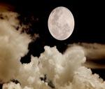 La noche | Audio Books | Fiction and Literature