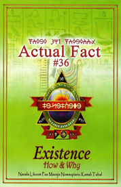 Actual Fact #36 - Existence, How & Why | eBooks | Science