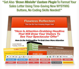 Flawless Reflection WordPress Minisite | Software | Design Templates