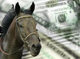 Win Big Money Using Small Stakes Horse Racing SystemWin Big Money Usin | eBooks | Sports
