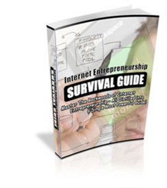 internet entrepreneurship survival guide -new ebook with plr