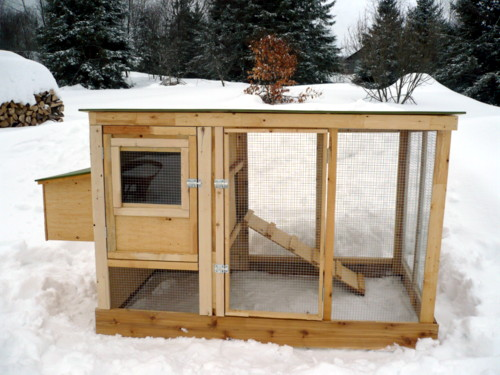 Ck coop access chicken coop plans for 6 chickens free for Chicken coop size for 6 chickens