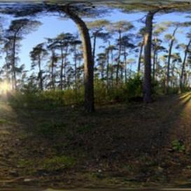 HDRI 360 021-bos-zon | Other Files | Everything Else