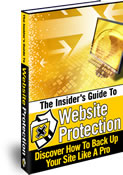 Website Protection | eBooks | Internet