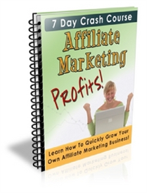 Affiliate Marketing Profits | eBooks | Internet