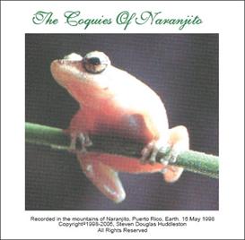 The Coquies of Naranjito | Music | Ambient