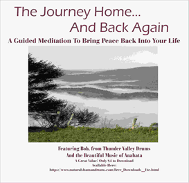Journey Home and Back Again, Featuring Bob and the Music of Anahata | Music | Alternative