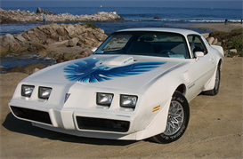 1979 Pontiac Firebird MVMA | eBooks | Automotive