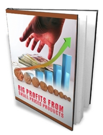 Big Profits From Small Priced Products ( MRR ) | eBooks | Internet
