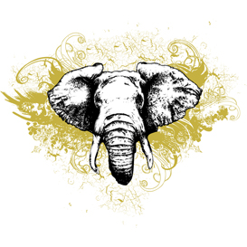 Elephant Grunge Vector Illustration | Photos and Images | Digital Art