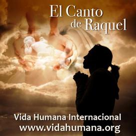 El Canto de Raquel | Music | International
