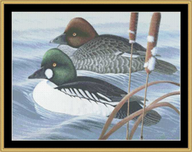 Riding The Ripple - Cross Stitch Download | Crafting | Cross-Stitch | Other