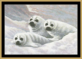 Harps Seal Pups - Cross Stitch Download | Crafting | Cross-Stitch | Other