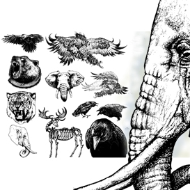 animals vector set 1