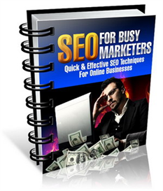 SEO for Busy Marketers | eBooks | Internet