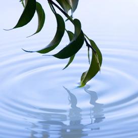 Serenity | Audio Books | Self-help