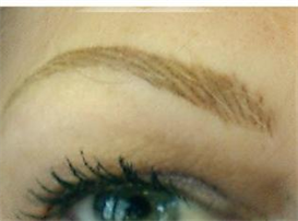 permanent makeup book, fabulous hairstroke eyebrows