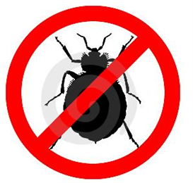 bed bug help guide