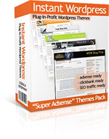 instant wordpress themes with master resale rights