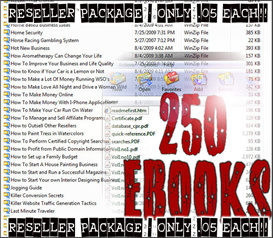 250 EBook Reseller Package
