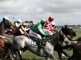 Horse racing system and staking plan l/d/b | eBooks | Sports