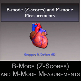 b-mode (z-scores) and m-mode measurements