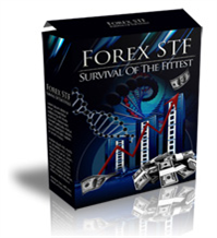 Forex STF Full Package