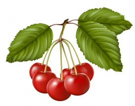 Vectorlib RF (Standard License): Red sweet cherry with leaves