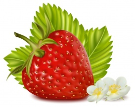 Vectorlib RF (Standard License): Photorealistic vector illustration. Strawberry with leaves and flowers.