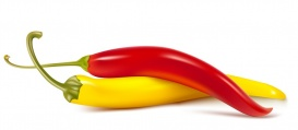 Vectorlib RF (Standard License): Vector colored hot chili peppers.