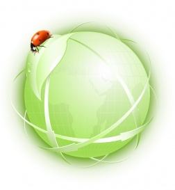 Vectorlib RF (Standard License): Green concept. Globe with green leaf and ladybird.