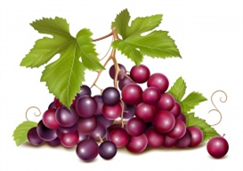 vectorlib rf (standard license): vector. grape cluster with green leaves.