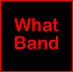 What Band Live @ Trade Winds 8/28/2010 2 Cd Set Michelle Birthday | Music | Rap and Hip-Hop