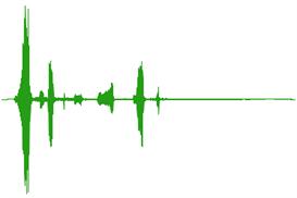 Animals Sounds Fx | Music | World