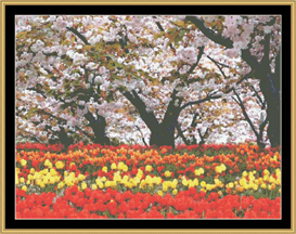 Cherry Blossoms & Tulips - Cross Stitch Download | Crafting | Cross-Stitch | Other