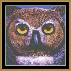 The Many Faces - Owl Cross Stitch Download | Crafting | Cross-Stitch | Other