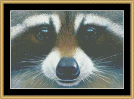 The Many Faces - Racoon Cross Stitch Download | Crafting | Cross-Stitch | Other