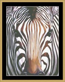 The Many Faces - Zebra Cross Stitch Download | Crafting | Cross-Stitch | Other