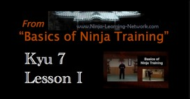 Ninjutsu 7th Kyu Lesson I - PINS  - Basics of Ninja Training