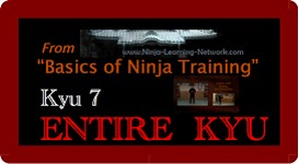 Basics of Ninja Training - 7th Kyu - LARGE MOVIE VERSION - Bujinkan / Ninjutsu | Movies and Videos | Sports