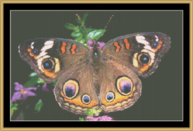 Perfect Butterfly - Cross Stitch Pattern Download | Crafting | Cross-Stitch | Other